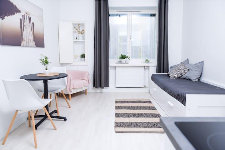 STUNNING renovated Studio in Kallio Helsinki