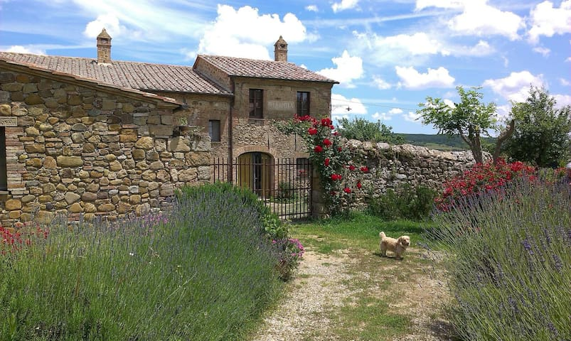 Room in Val D'Orcia - Monticchiello - Bed & Breakfast