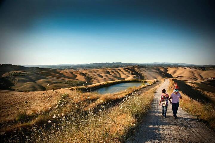 "A due passi da Siena ""Le Biancane"""