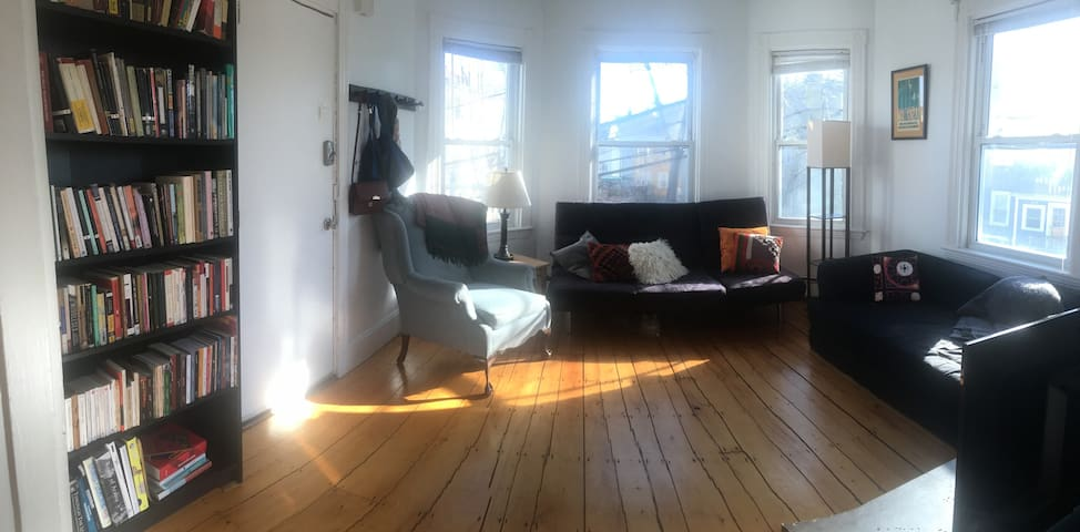 Bright, cozy Somerville room (with cuddly cat)