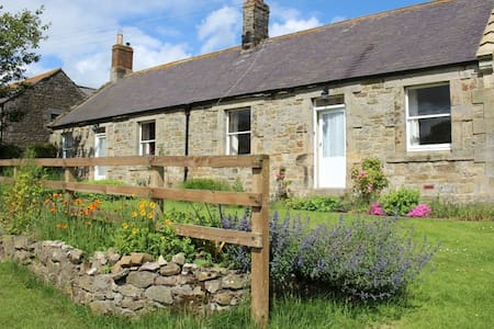 Orchard Cottage, Bamburgh - Lowick