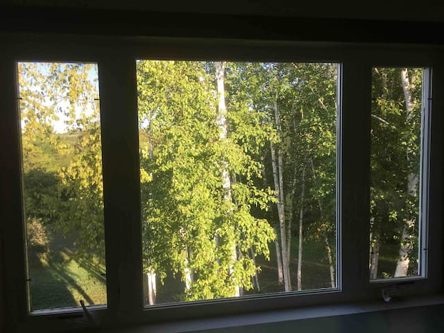 View from the queen bedroom window. All the windows in the apartment have a beautiful view.