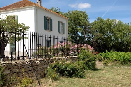 Old French house with swimming pool - Fontcouverte