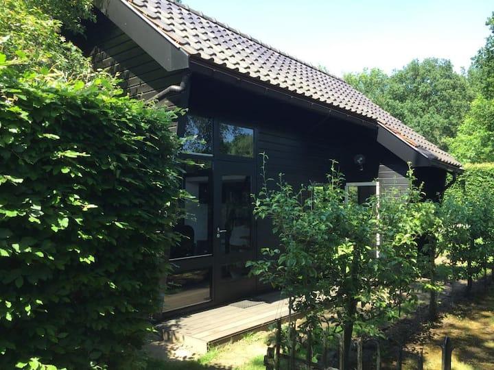 Hilvarenbeek