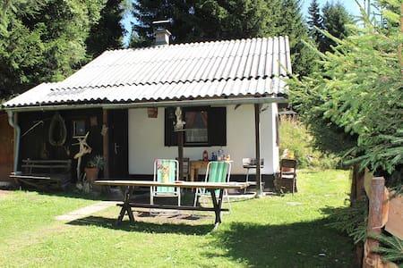 Cozy small hut in the beautiful Seetaler Alps - Sankt Georgen bei Neumarkt - 一軒家