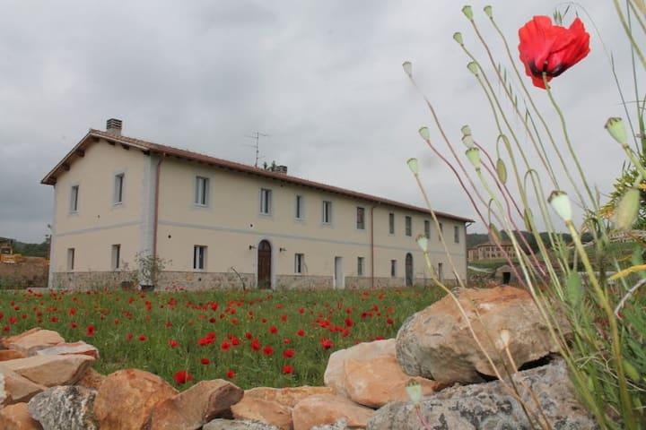 Casale immerso nella natura  della Toscana - Civitella Paganico