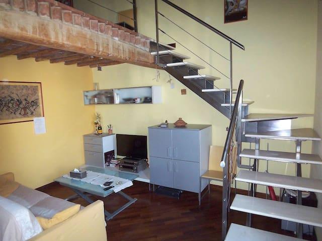 Grazioso Appartamento nelle Crete Senesi