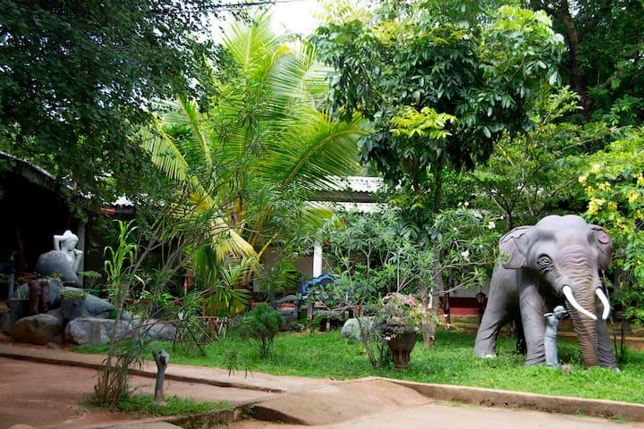 Sigiriya Samanala Guest House Family Room