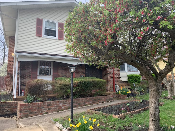 Charming 4BR/3BA suburban home near Washington, DC