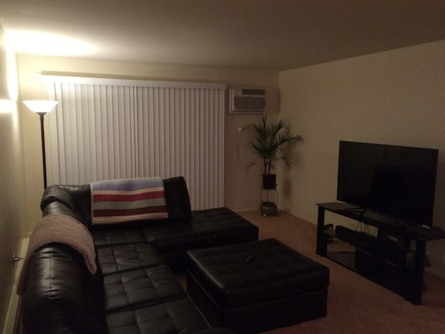 Cozy Apartment. Quiet and relaxing. - Alsip