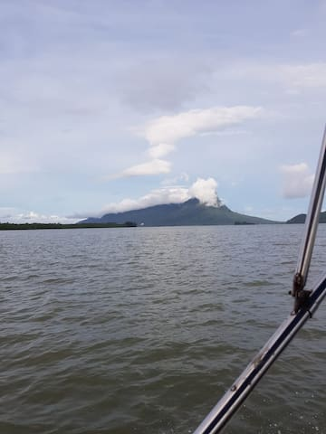 Trip to wetland wildlife Cruise along santubong