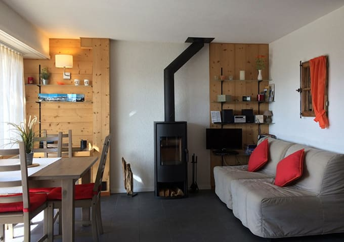 Magnifique petit appartement 1,5 pce, rénové