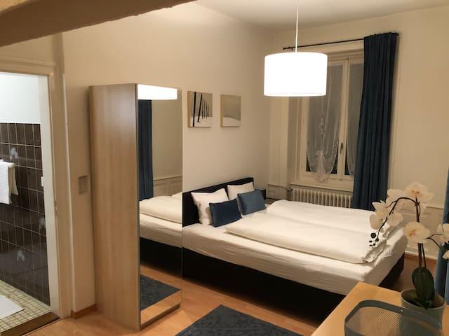 Grosszügige 1.5 Zimmer Wohnung mit sonnigem Balkon