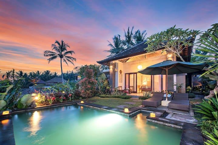 Magnificent One Bedroom Taluh Bebek Pool Villa
