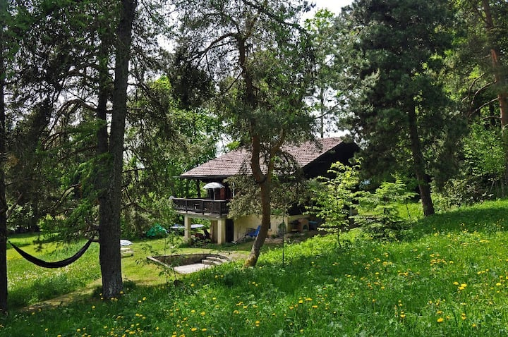 Nice 5 rooms chalet in near the forest, not far from Villars-sur-Ollon