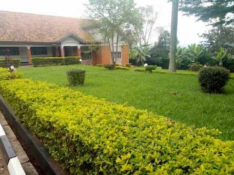 IBM Buloba. A luxurious and private home