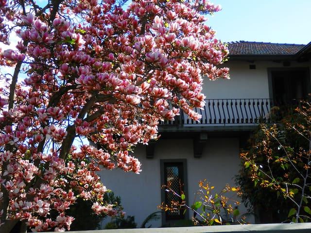 Mid-century Italianate grand villa is the main house