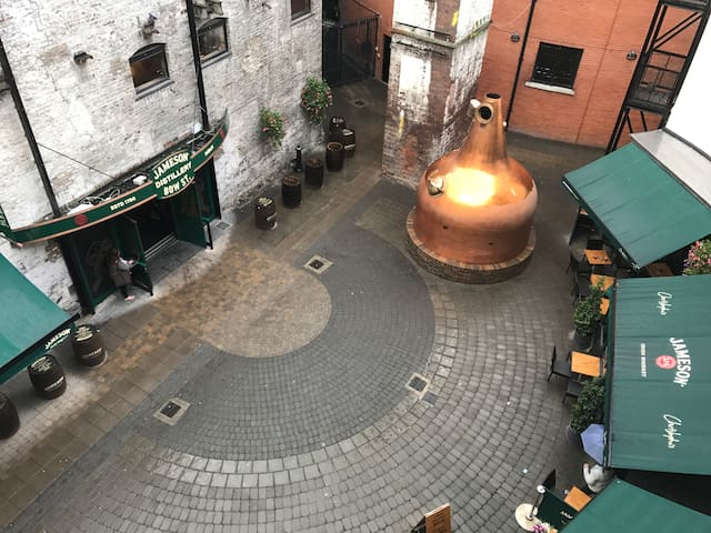 Entire apartment overlooking Jameson Distillery