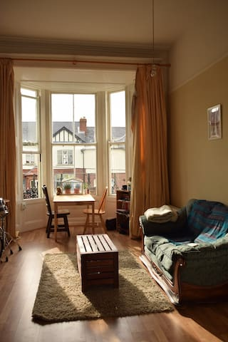 Lovely Seaside Georgian Apartment - Monkstown - Appartement