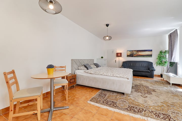 Central Awesome Apartment near the Charles Bridge♛