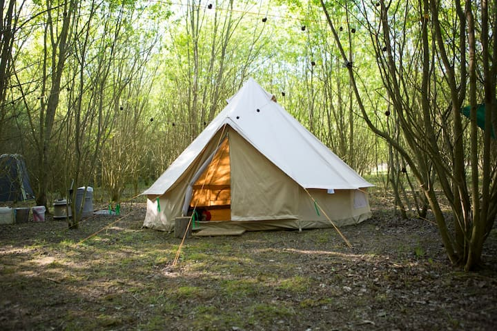 Woodland Wild Camp In A Bell Tent (5 person)