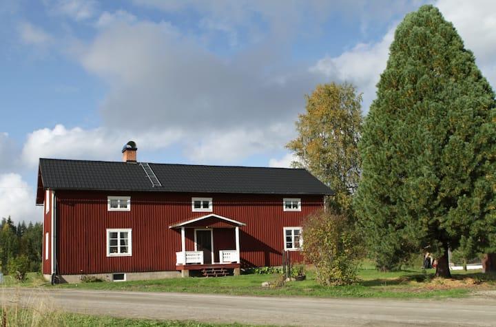 Sjönära gård, omgiven av berusande vacker natur