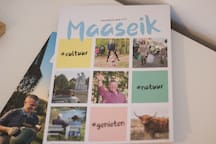 Info over de stad Maaseik