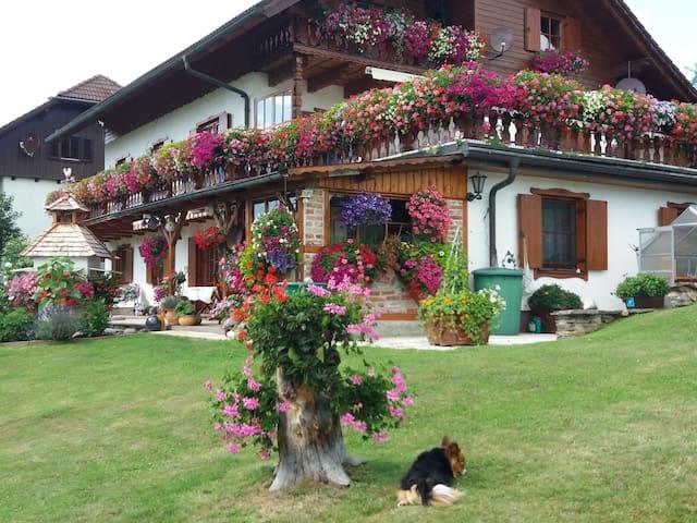 Ferienwohnung Prietl in Semriach auch für Monteure