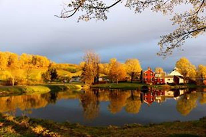 Beautiful fall colors at the farm!