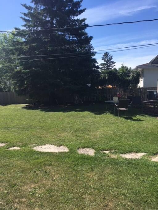 Backyard For Hanging
