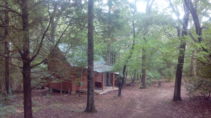 Clemson Tiger Country Cabin