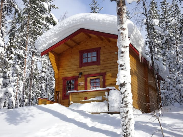 rustic cottage in the forest (Björn)