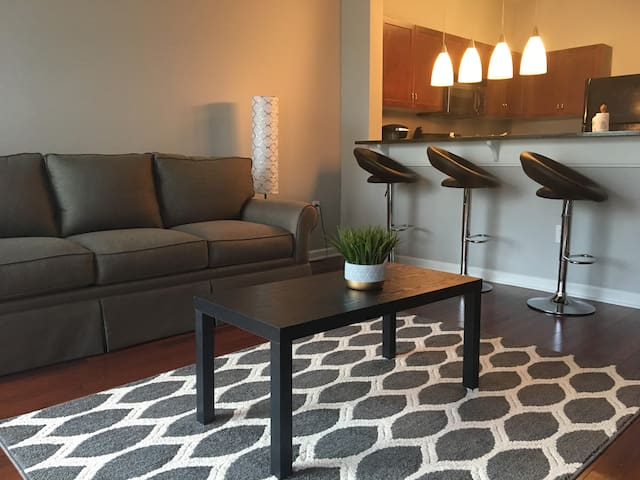 Clean Condo Close To All Downtown Attractions!
