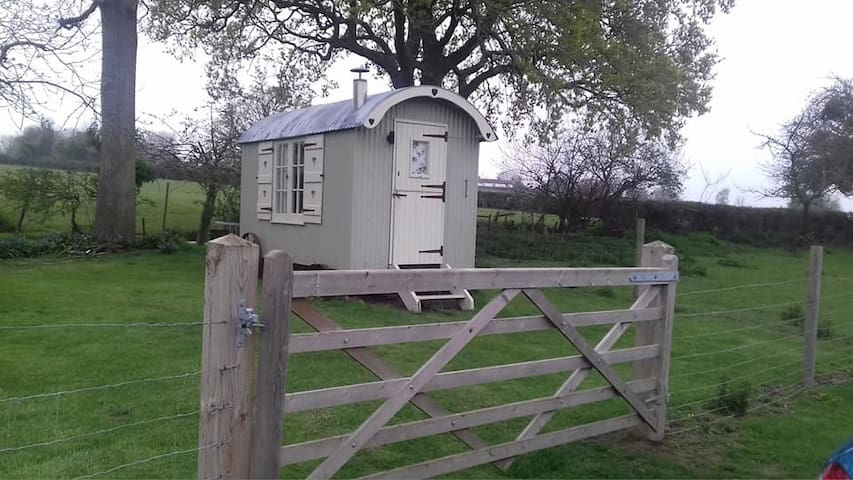 Cherrywood Shepherd's Hut at Doolittle's Campsite