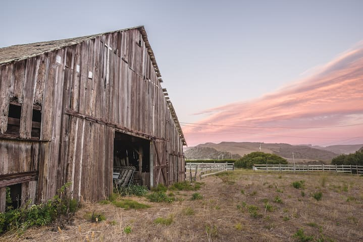 Farm Retreat - Half Moon Bay