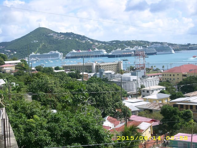 AUNT ANNA'S FANCY ( DON'T WASTE MONEY ON TAXIS) - Charlotte Amalie