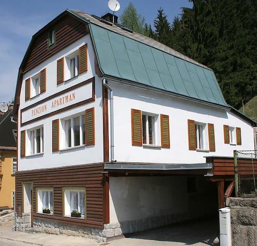 Apartmán 7 v horském městečku Janov