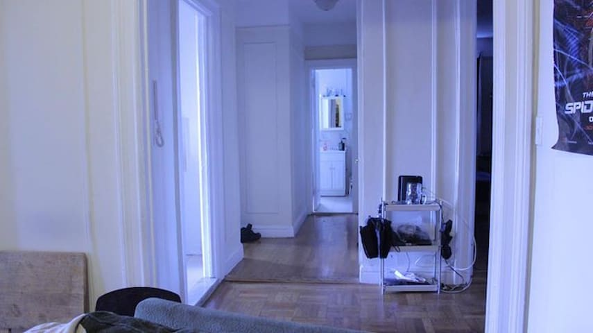 Bright Spacious Apartment in the City!