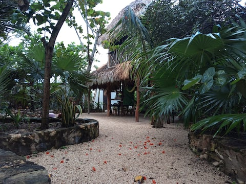 Big Room at casa Kuka. Jungle by the beach.