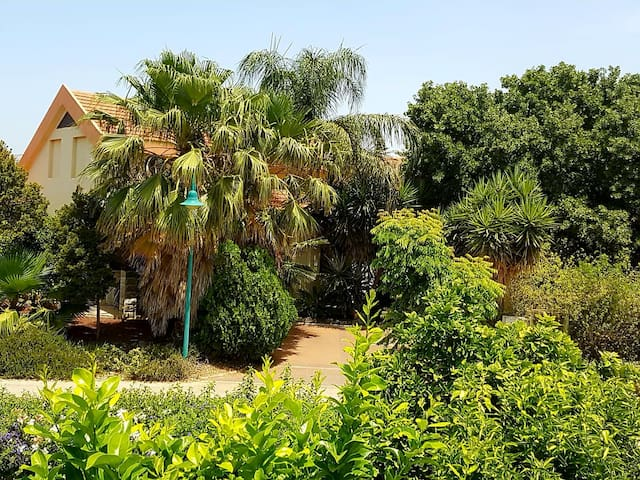 Huge & private villa in Kibbutz Dafna