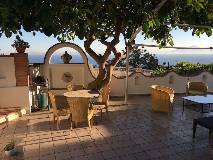 Residenza L'Isola - Lucertola Azzurra
