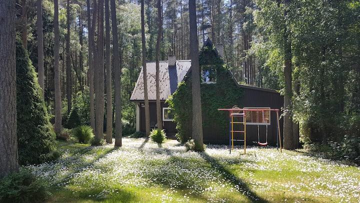 Загородный дом в Вяэна-Йыэсуу, в 20 км от Таллина