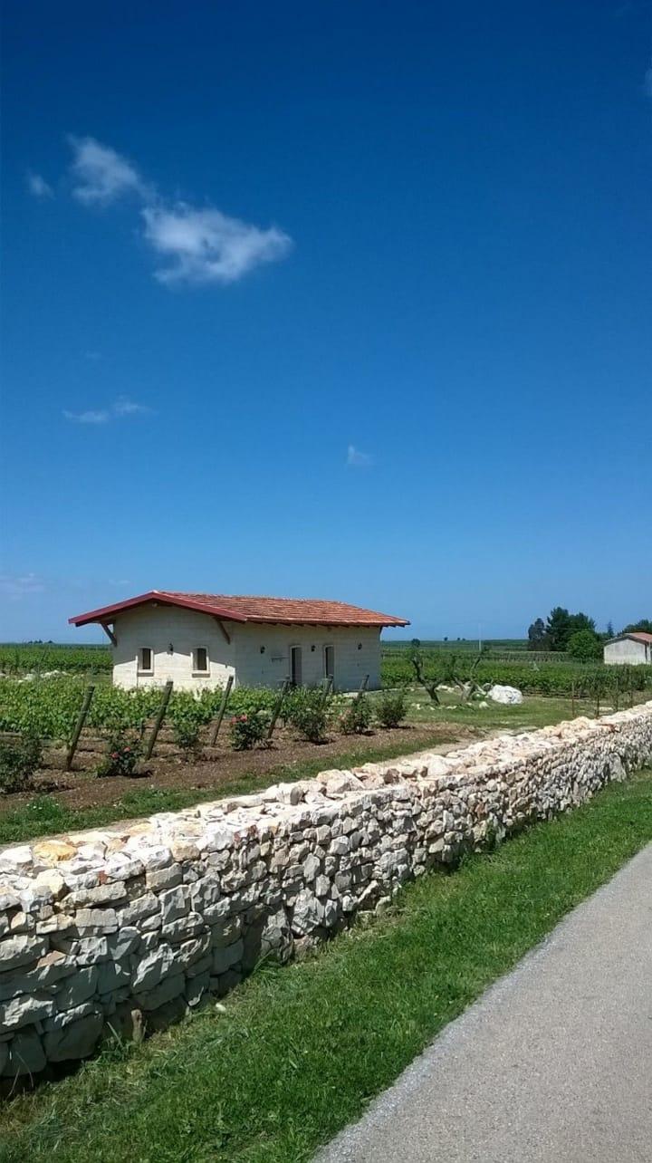 Casa a Montegrosso Ad. Agr. Biologica Bonizio