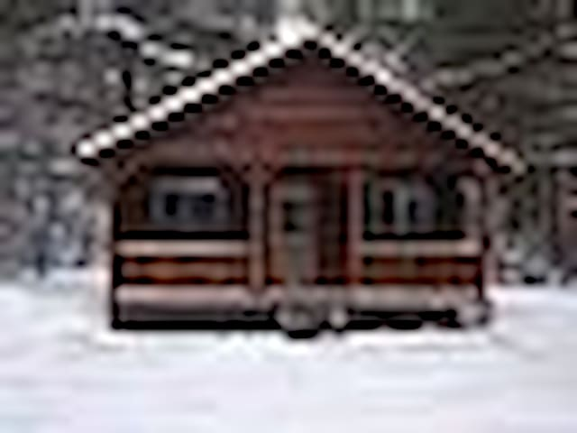 ADK North Country Cabins - Woodgate - Cabaña