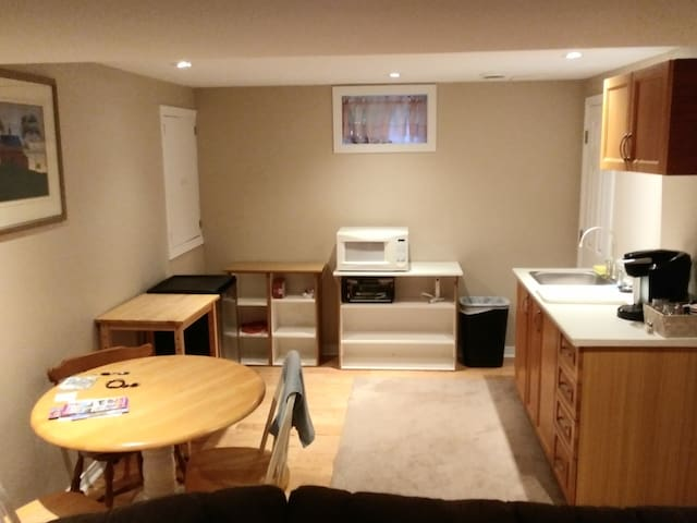 Large lower level apartment with kitchenette