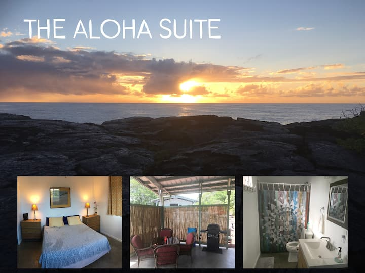 The Aloha Suite ( $475.00 for a week+taxes/fees)