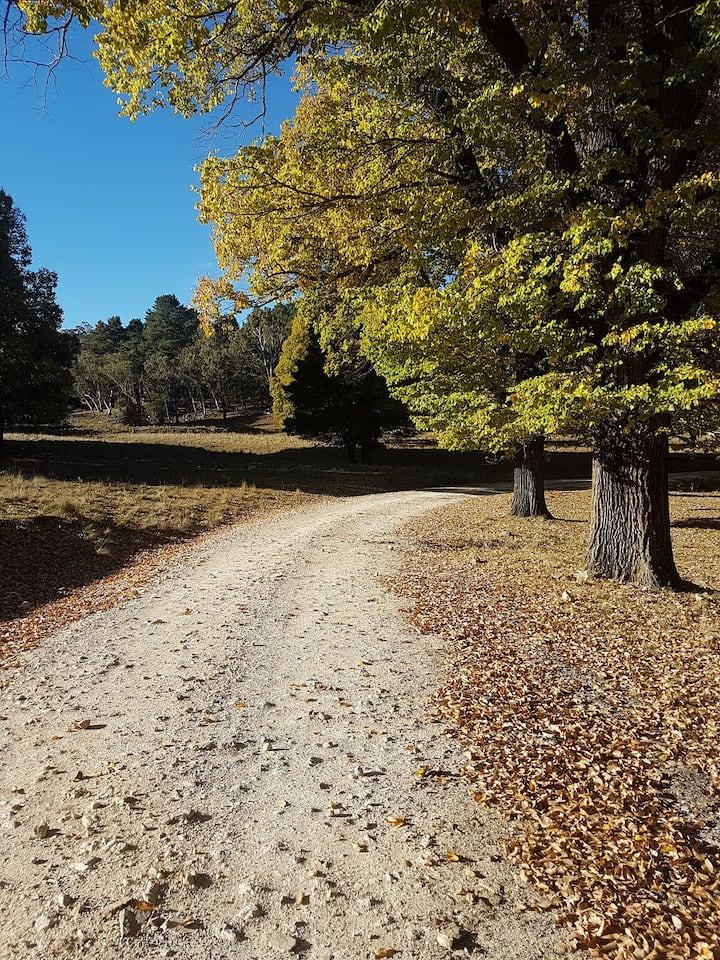 My Rural Retreat