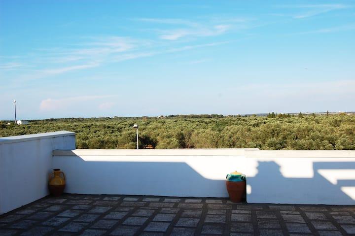 lovely Terrace Apartment near Otranto