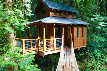 Tree House in the City!