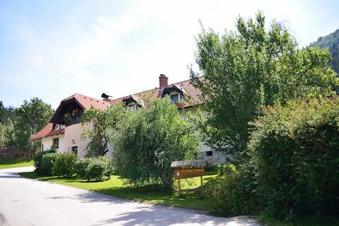 Studio apartment for 2 on Tourist Farm Ravnjak
